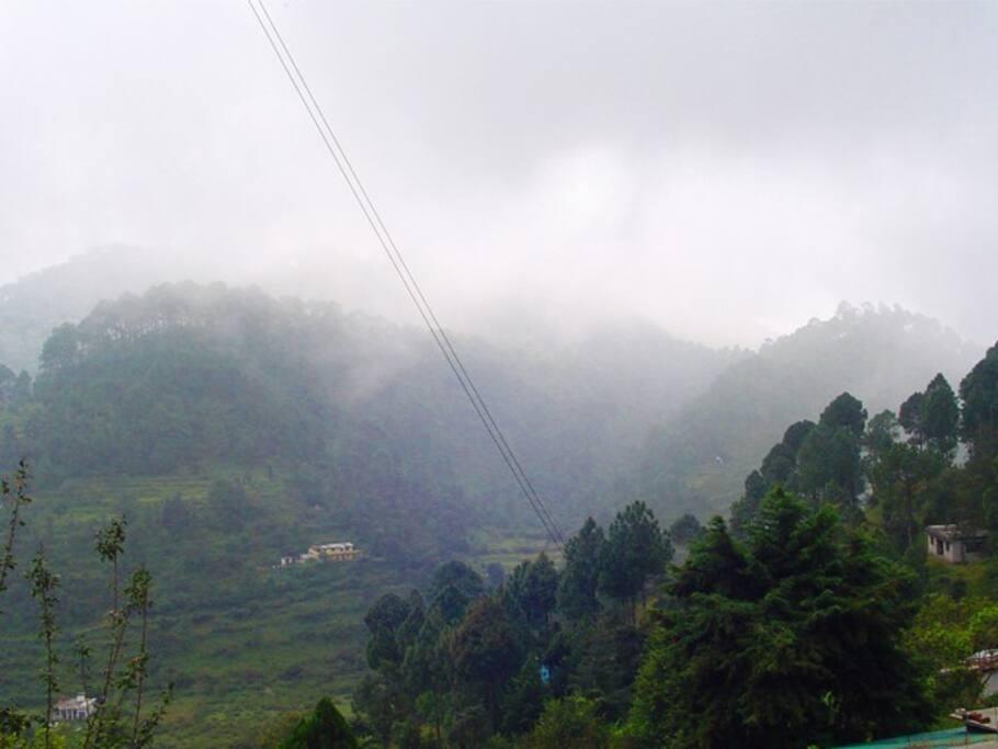 Valley facing studios