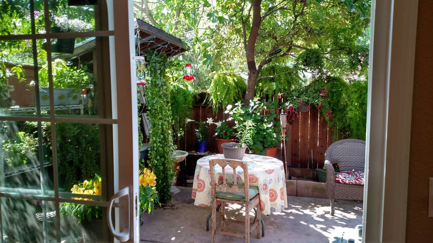Private Fenced Back Yard Garden Sanctuary