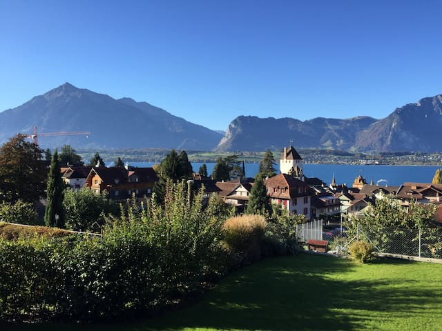 Charming Lake View Apartment - Oberhofen am Thunersee - Huoneisto