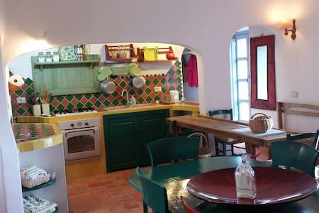 charming country-house near the sea - Arzachena