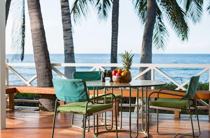 Luxury Spacious Beachfront Condo w/Private Pool, Yard, & Ocean Views. Hale Kauka