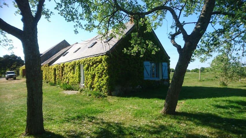 Charmante fermette bucolique - Montoir-de-Bretagne - Huis