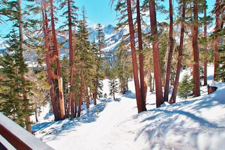 Ski-In, Ski-Out Mammoth Condo with Amazing Views!