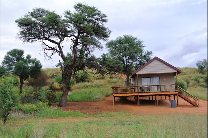 Kalahari Calmness at Tevrede Lekkerus! (Unit 3)