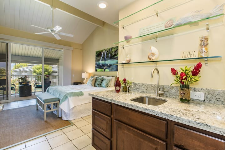 Beautiful 317 Square Foot Studio ~ Perfect for Two