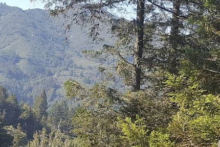 Redwoods Getaway - up in the woods! - Mill Valley - House