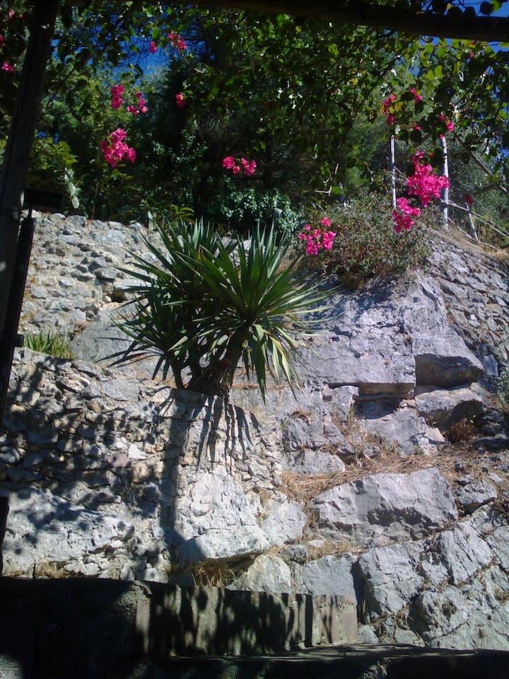 Studios 1 panoramico in costiera Amalfitana