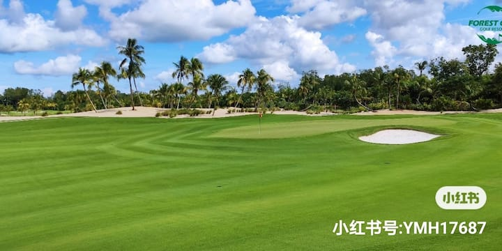 【高尔夫民宿住打配套】 【Forest City Golf Homestay  & Play Pac