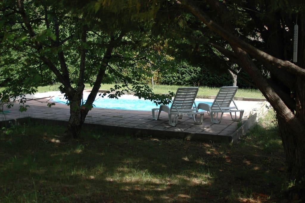 L'ombre naturelle près de la piscine