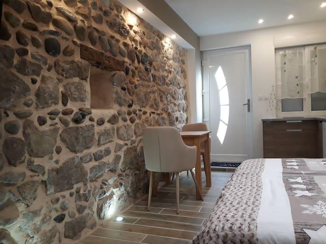 charmant studio bord du Rhône