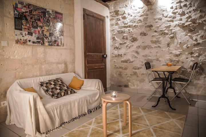 Maison confidentielle et calme, centre historique