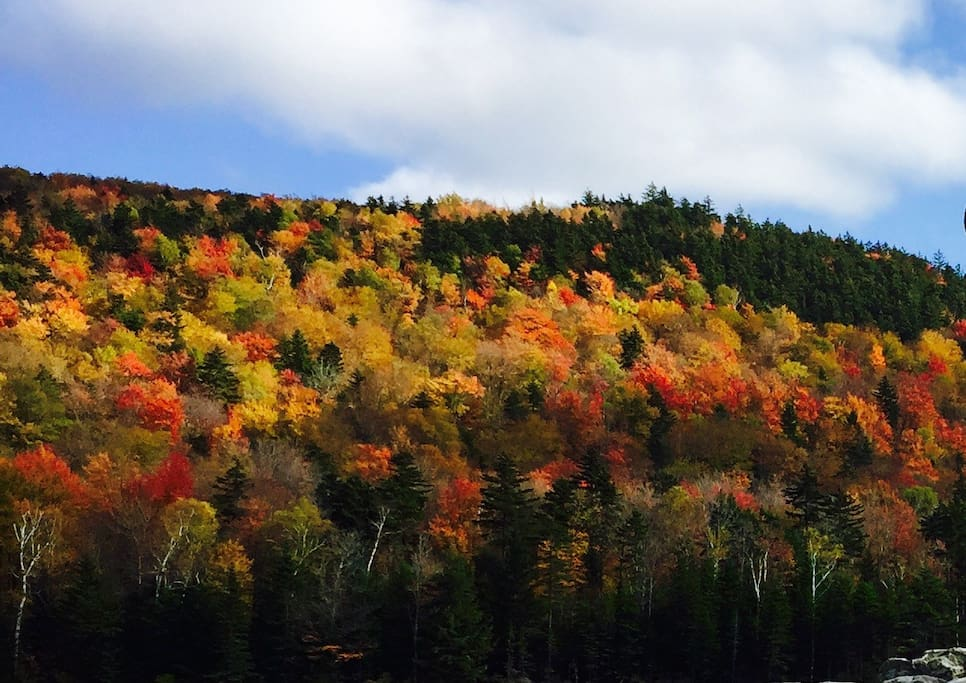 Coming up....fall foliage., 2018. Late September through October.