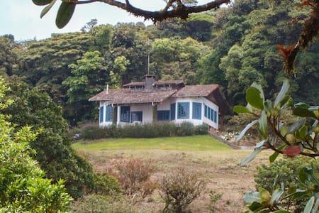 Los Alpes Lodge im Bergregenwald von Costa Rica - Piedades Sur - Természeti szállás
