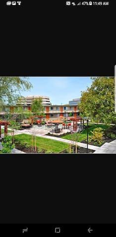 Apartment in Down Town Walnut Creek - Walnut Creek - Apartemen