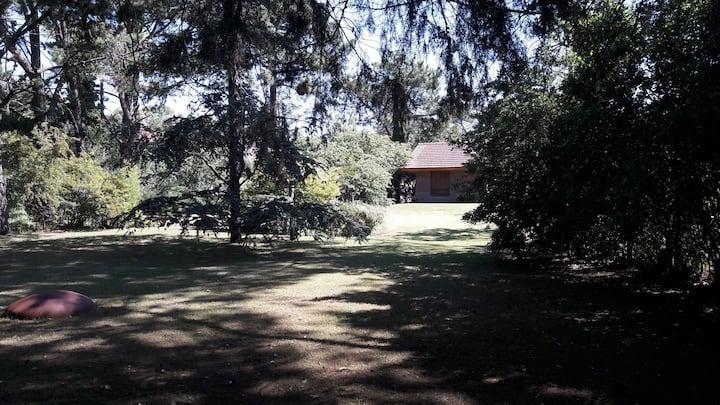 Casa en pinamar amplio jardín