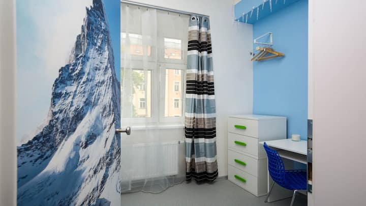 Single room, Winter theme - WALKABLE TO CENTRE