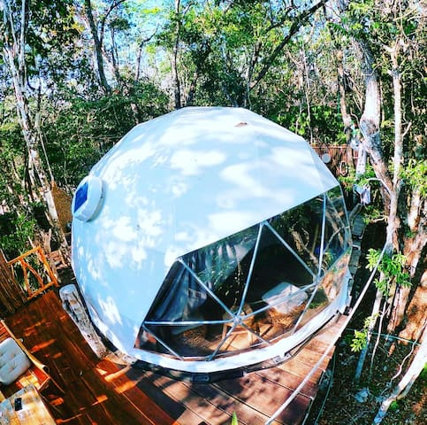 Exclusive Jungle Eco-Treehouse steps to cenotes