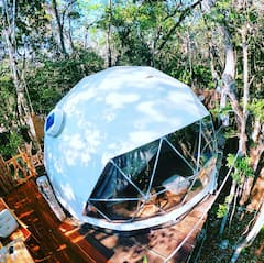 Jungle+Eco+Tree+House+walking+distance+to+cenotes