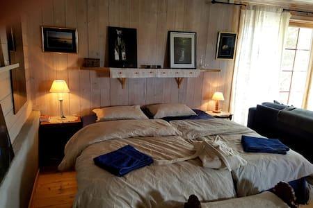 Ellens kunstgalleri. Norsk hytte med strøm og vann