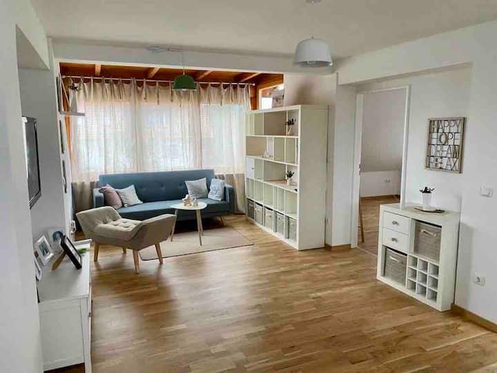 Beautiful scandinavian style apartment