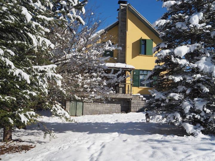 Sarı Ev Kartalkaya