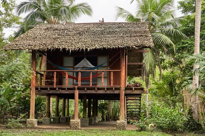 Manglar Bungalow en Mecana Ecohotel