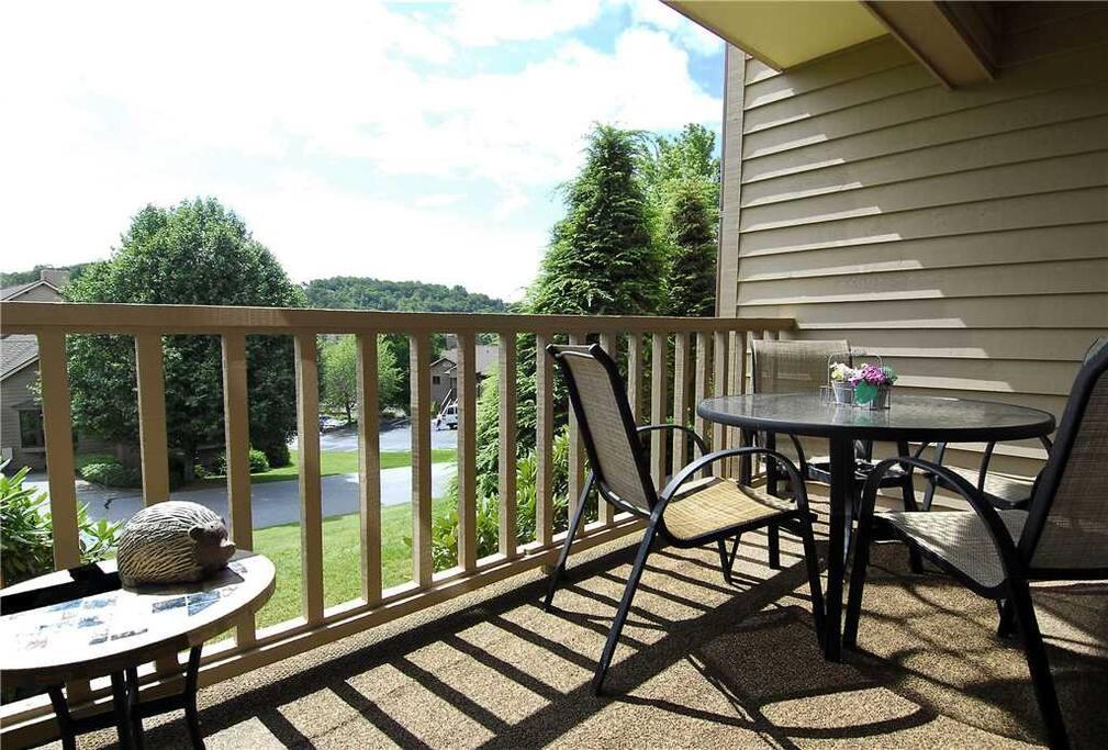 Porch/View