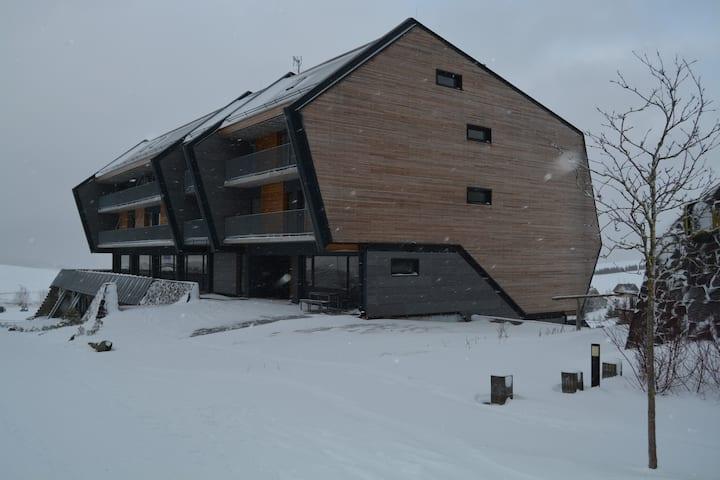SNOW  2 horský apartmán