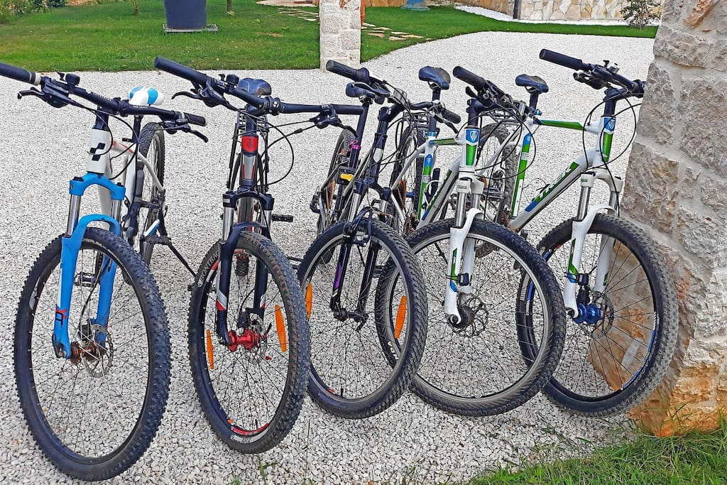 Bicycles on disposal