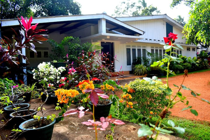 Villa Lorenta 2 Anuradhapura - Single Room