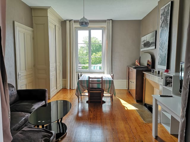 Grand meublé lumineux avec garage et balcon