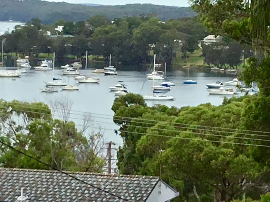 View of Lake Macquarie from front garden. Not quite this close though.