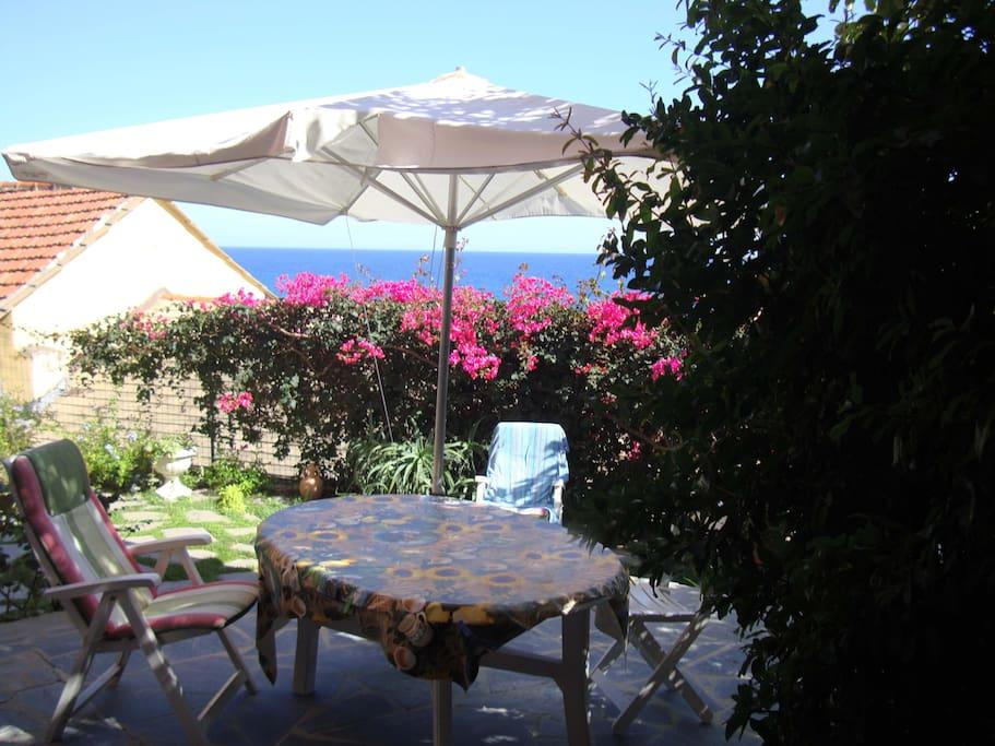 Porzione giardino vista mare