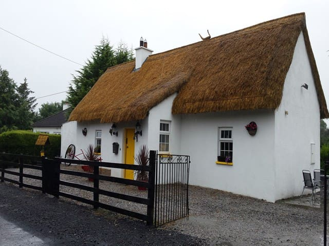 Fitzpatricks Thatched Cottage Laois - Ballacolla
