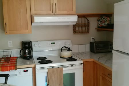 Private 1 Bedroom Apartment - Nelson - Apartment