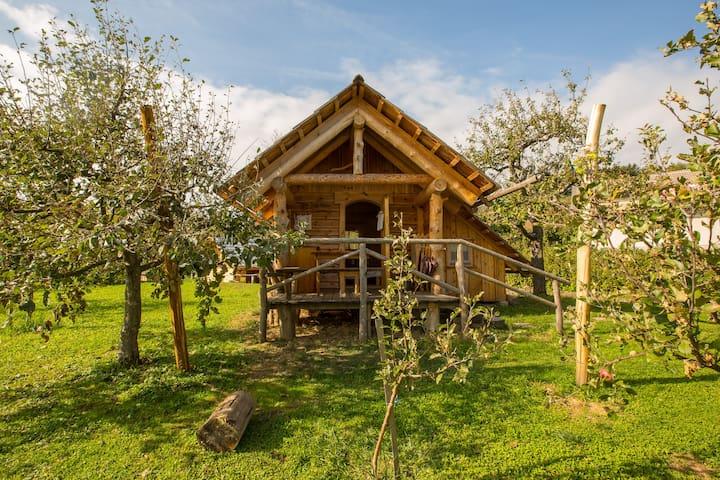 "Family hut glamping organic farm ""Ta Fletna"""