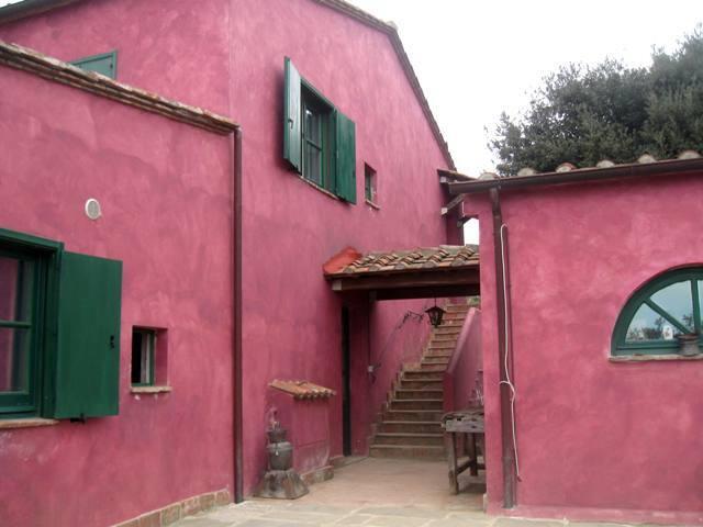 casolare in collina con vista mare 5 km dal mare - Castellaccio - House