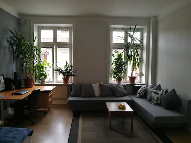 Spacious bright room, best location Haga/Linné - Gothenburg - Apartment