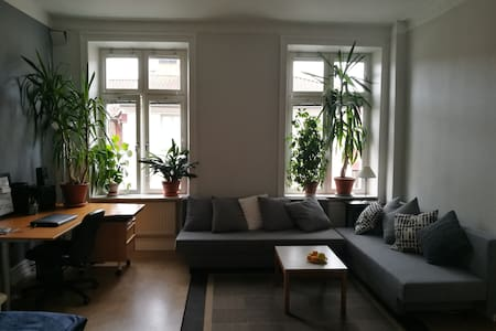 Spacious bright room, best location Haga / Linné - Gothenburg - Apartment