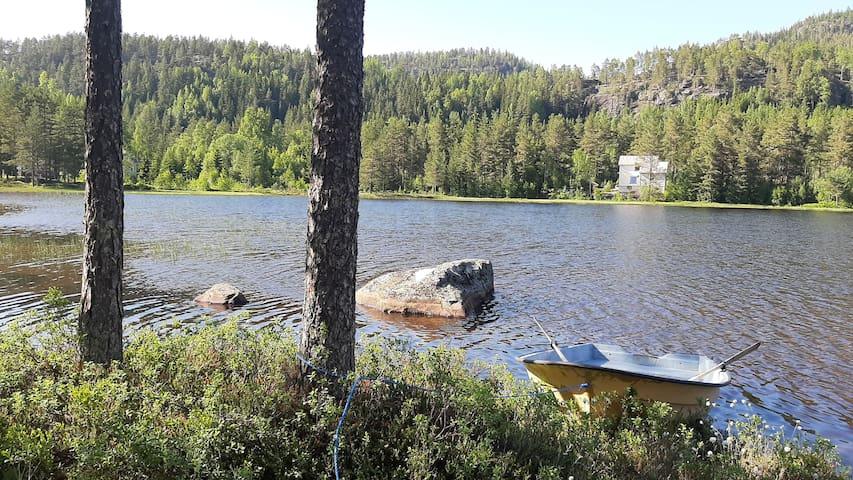 Lei rom hos forfatter midt i Vest-Telemarks natur!