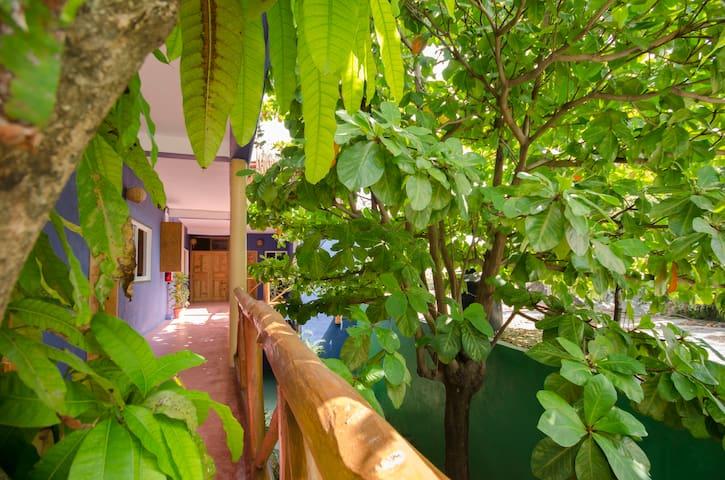 Casa Almendro Mango - Double Economy Room