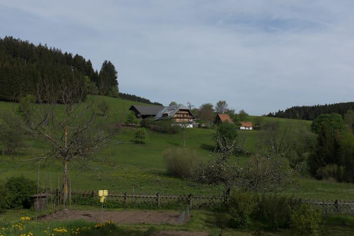 Biohof im Herzen des Schwarzwalds