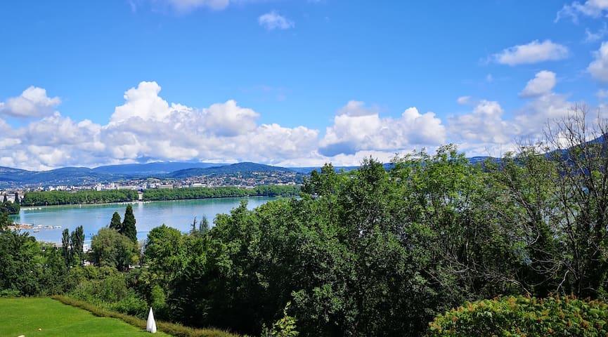 Villa prestigieuse sur le lac d'Annecy - piscine