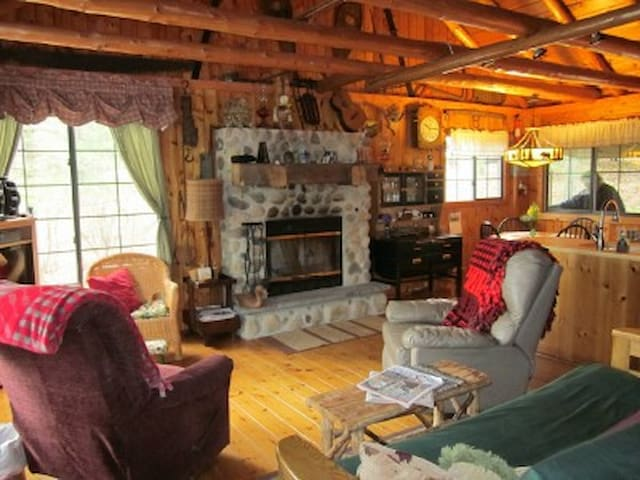 Kirchner's Lakefront Log cottage - South Boardman