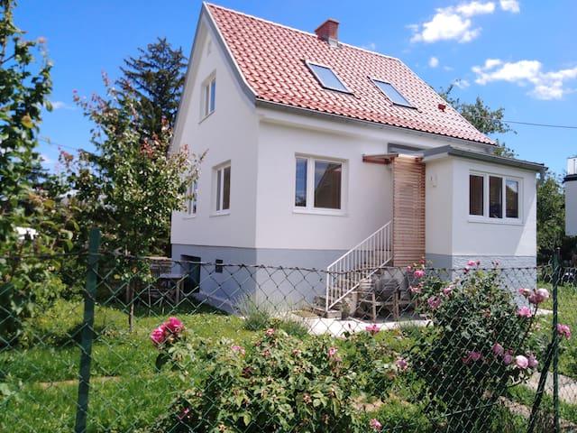 Grünoase in Wien - ganze Hausetage mit Garten