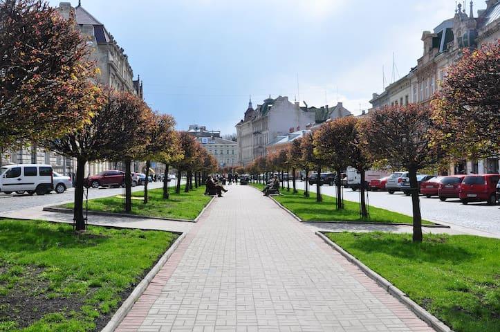 Уютная квартира в самом центре города Львов - L'viv - Apartment