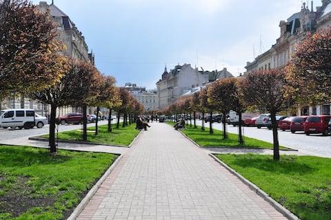 Acogedor apartamento en el corazón de Lviv