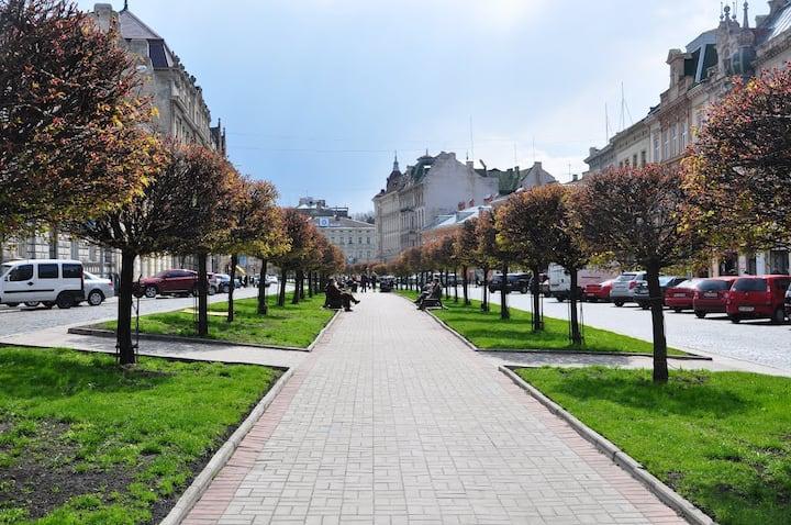 Уютная квартира в самом центре города Львов