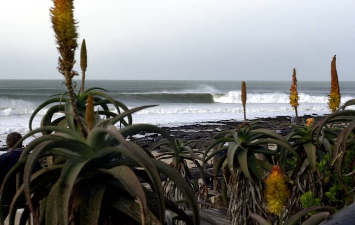 """""""Salads"""" JBay Surf View Flat on 150m from Beach"""
