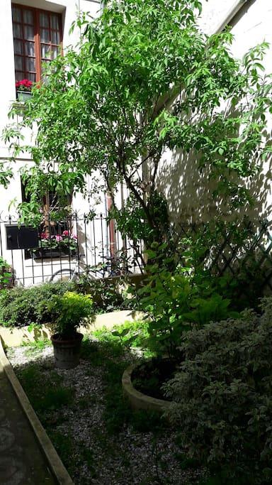 petit studio sur jardin appartements louer trouville sur mer basse normandie france. Black Bedroom Furniture Sets. Home Design Ideas